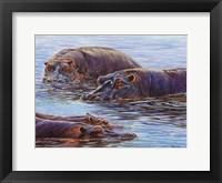 Framed Hippo Pond