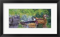 Framed Bayou Wood Ducks