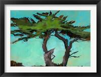 Framed Cypresses