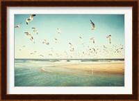 Framed Freedom