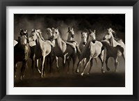 Framed Dream Horses