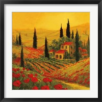 Framed Poppies of Toscano II