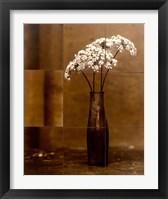 Framed Night Flower