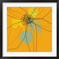 Framed Orange Lite 2