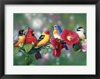 Framed Songbirds On Hollyhock