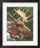 Winter Moose Framed Print
