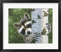 Framed Peek-A-Boo Raccoon