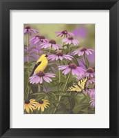 Framed Butterfly & Finch Amongst Flowers