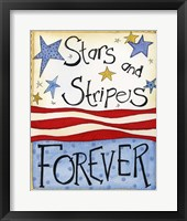 Framed Stars and Stripes