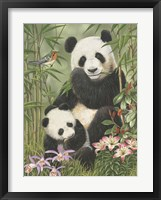 Framed Panda Paradise