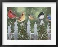 Framed Winter Birds on a Snowy Fence