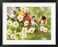 Framed Songbirds On a Flowering Branch