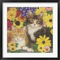 Kitties And Flowers Framed Print