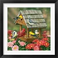 Framed Backyard Birds Fall Feast