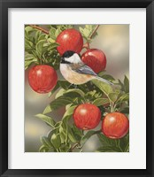 Framed Orchard Guest