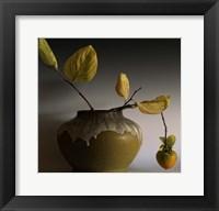 Framed Still Life with Persimmon