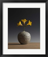 Framed Three Freesia Blossoms