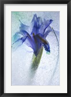 Framed Flowers on Ice-6