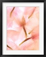 Framed Flores Congeladas 594