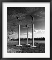 Framed Harpies