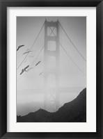 Framed Golden Gate Pier and Birds II