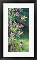 Framed Flower Quest