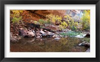Framed Reflecting pond in Zion National Park, Springdale, Utah, USA