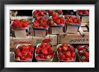 Framed Strawberries for sale at weekly market, Arles, Bouches-Du-Rhone, Provence-Alpes-Cote d'Azur, France