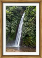 Framed Waterfall near Munduk, Gobleg, Banjar, Bali, Indonesia