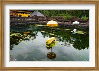 Framed Covered stones with umbrella in ritual pool at holy spring temple, Tirta Empul Temple, Tampaksiring, Bali, Indonesia