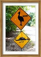 Framed Warning sign at the roadside, Cape Tribulation, Queensland, Australia