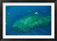 Framed Aerial view of coral reef in the pacific ocean, Great Barrier Reef, Queensland, Australia