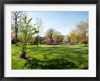 Framed Sherwood Gardens, Baltimore