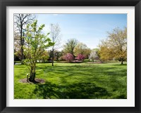 Framed Sherwood Gardens, Baltimore, Maryland