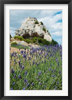 Framed Lavender field in front of ruins of fortress on a rock, Les Baux-de-Provence, Provence-Alpes-Cote d'Azur, France