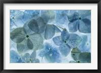 Framed Flores en Hielo II