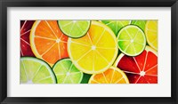 Framed Fruit Slices