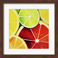 Framed Sliced Grapefruit