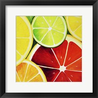 Sliced Grapefruit Framed Print