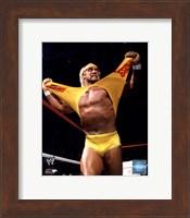 Framed Hulk Hogan in action