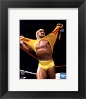Framed Hulk Hogan in action