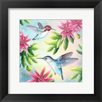 Framed Bee Hummingbirds