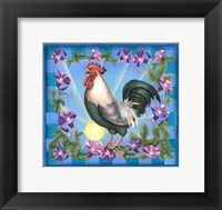 Framed Morning Glory Rooster I