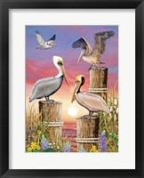 Framed Pelicans-Vertical