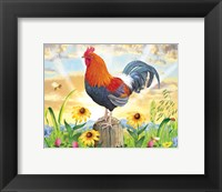 Framed Rooster At Dawn