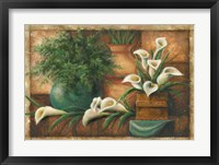 Framed Vessels And Callas