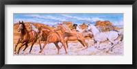Framed Desert Run