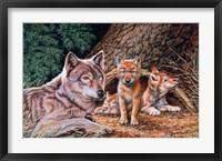 Framed Wolf Den