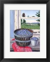 Framed Blueberries And Red Bandana