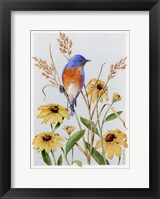 Framed Bluebird And Blackeyed Susans